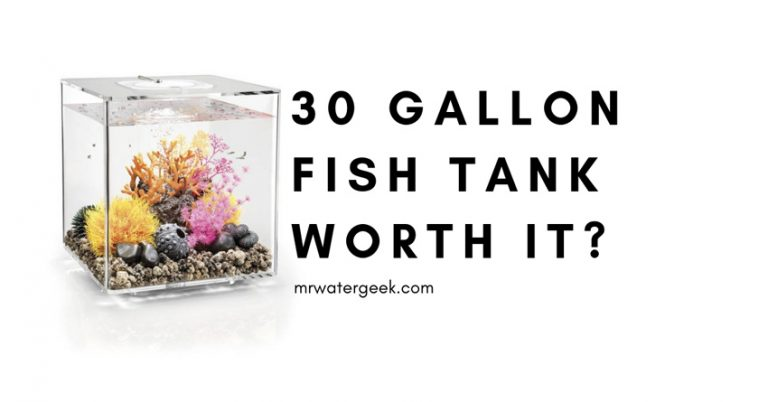 Do NOT Buy A 30 Gallon Fish Tank Until You Read This