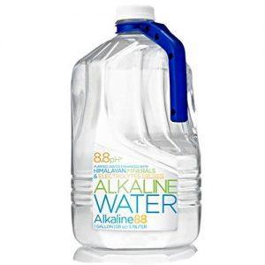 Alkaline 88 Alkaline Water (6 Bottles)