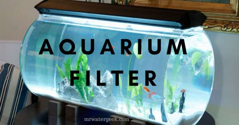 5 Best Aquarium Water Filters (Including The Good & BAD Features)