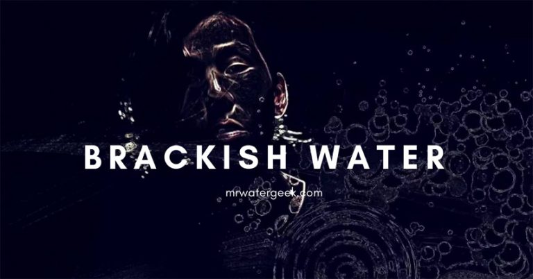 What is Brackish Water? PROBLEMS + How to Fix Them
