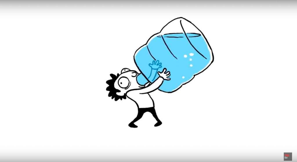 how much water should we drink