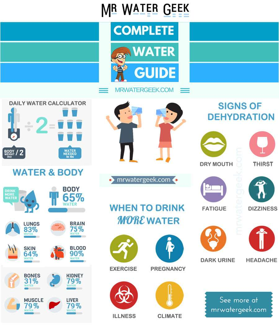 Drinking Water Guide Infographic