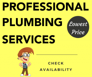 Professional PLUMBING Offer
