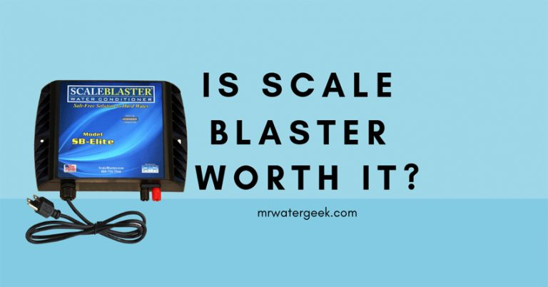 Do NOT Buy Until You Read My Top 2 Scale Blaster Reviews
