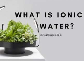 So What Exactly is Ionic Water And How Do You Get It?