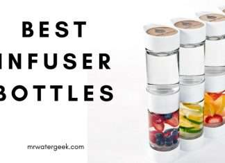The Best Fruit Infuser Water Bottle With One BIG Problem